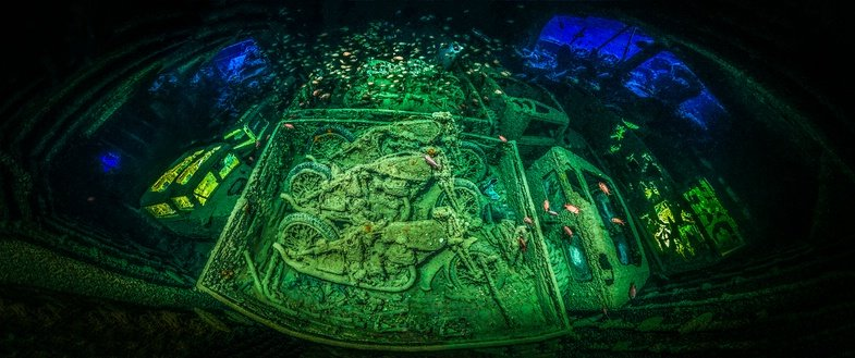 Tobias Friedrich ist Unterwasserfotograf des Jahres 2018