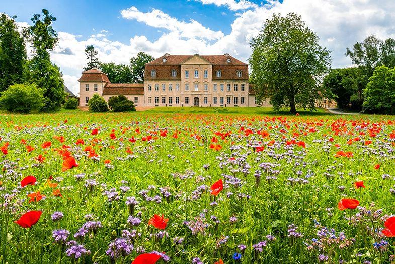 Neuland in Schloss Kummerow
