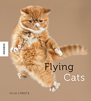 Flying Cats Book Cover