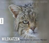 Wildkatzen. Rückkehr in unsere Wälder Book Cover