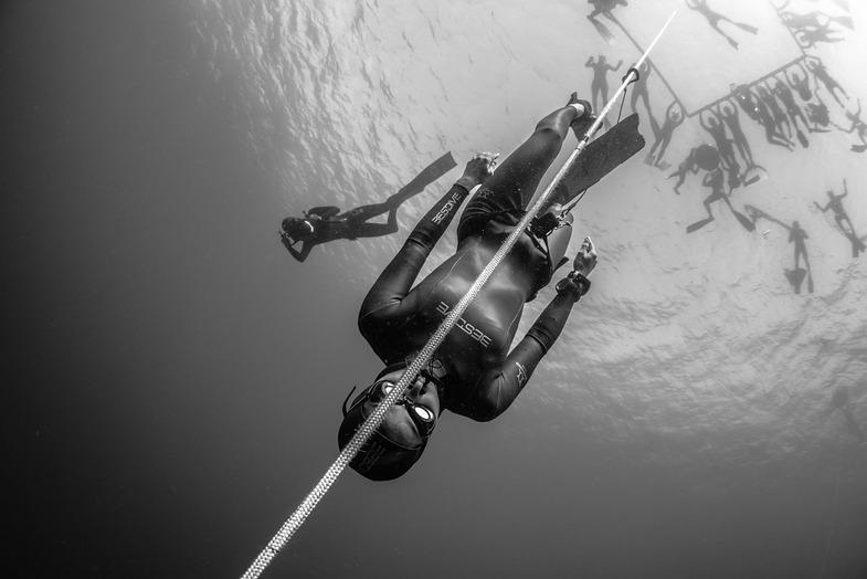 SWPA: Fotowettbewerb startet mit neuen Kategorien